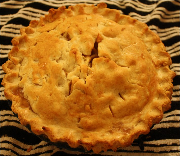 Grandma's Apple Pie I
