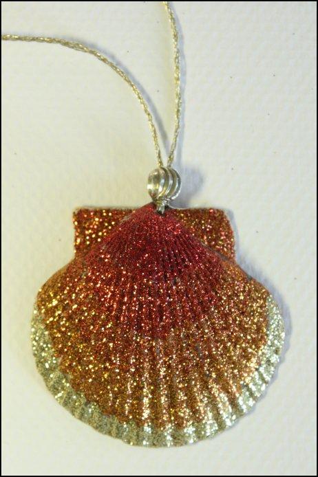 Prince Charming's shell