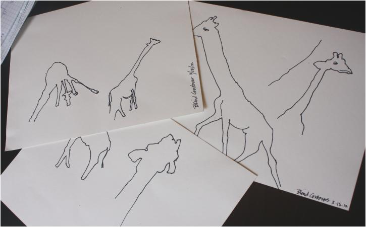 Blind contour drawings of giraffes - first attempts