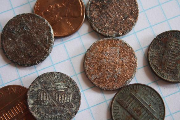 Unusual Collections - pennies found on the street in left-turn bays