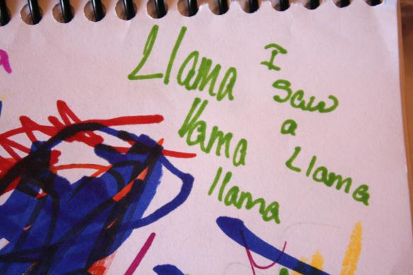 Odd Collections - Llama