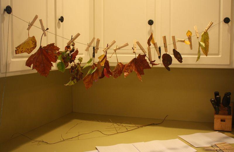 Waxing leaves 4