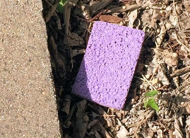 Lost sponge