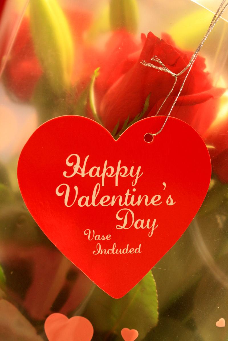 Happy Valentine's Day, Vase Included